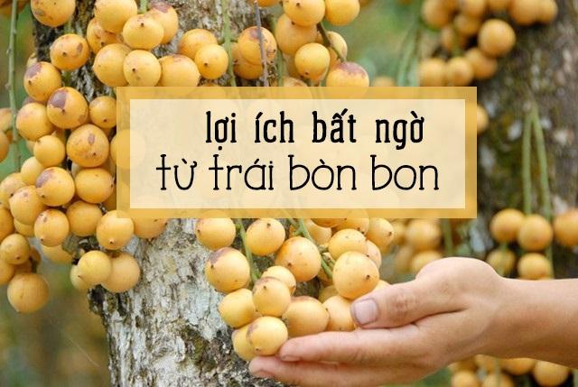 lợi ích khi ăn trái bòn bon